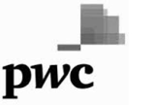 Neo Code - PricewaterhouseCoopers Logo